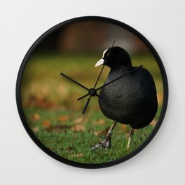 Moorhen Wall Clock
