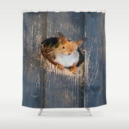 Peek-A-Boo! Squirrel Portrait Shower Curtain