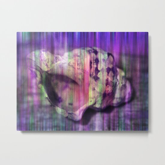 colorful shell Metal Print