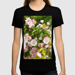 the Apple trees in bloom T-shirt