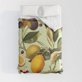 Vintage Fruit Pattern XIII Comforters