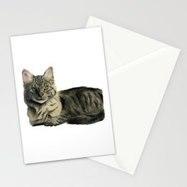 Domestic Medium Hair Cat Watercolor Painting Stationery Cards
