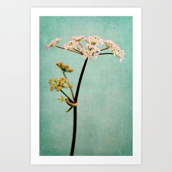 hogweed Art Print
