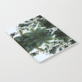 Pine Notebook