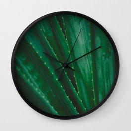 Pandanus Spiralis Wall Clock