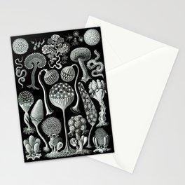 Ernst Haeckel - Mycetozoa (black) Stationery Cards