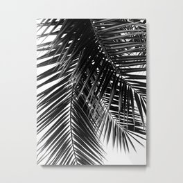 Tropical Vibes | Black and White Metal Print