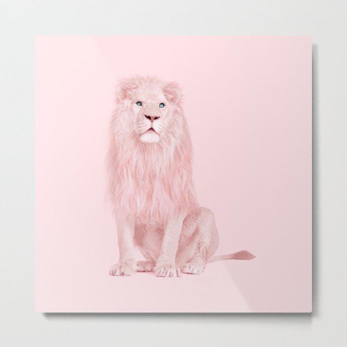 ALBINO LION Metal Print
