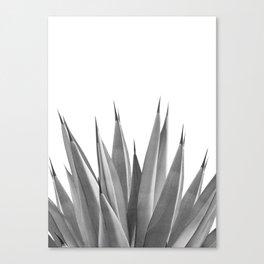 Gray Agave Dream #1 #tropical #decor #art #society6 Canvas Print