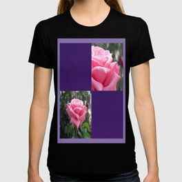Pink Roses in Anzures 6 Blank Q9F0 T-shirt