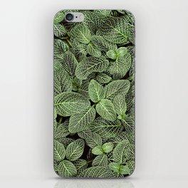 Just Green iPhone Skin