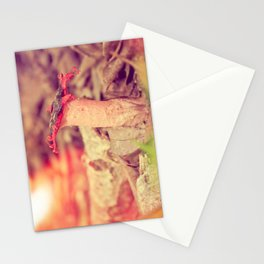 Poetry on the forest floor - landscape and macro photography Stationery Cards