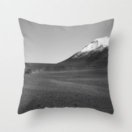Adventure Throw Pillow