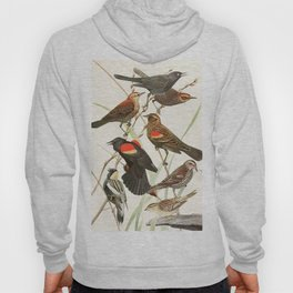 Birds of America 1923 Hoody
