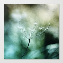 In Quest Of Canvas Print