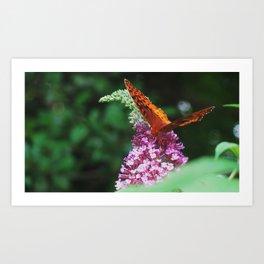 Springtime in Virginia I  Art Print
