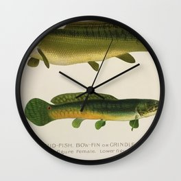 Illustrated New York Game Fish, Dogfish, Mud-fish, Bow-Fish Identification Chart Wall Clock