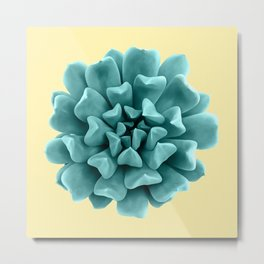 Cyan Succulent Plant on Yellow Metal Print