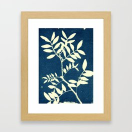 Botanicus (5), Botanical Art Print, Art Print, Botanical Poster, Vintage Print Framed Art Print
