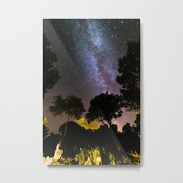 Trees landscape with milky way Metal Print