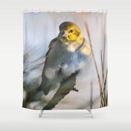 A little winter color Shower Curtain