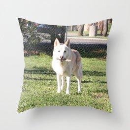 Raven 2 Throw Pillow