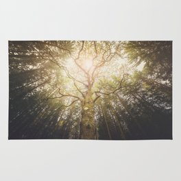 I found a tree in the forest Rug