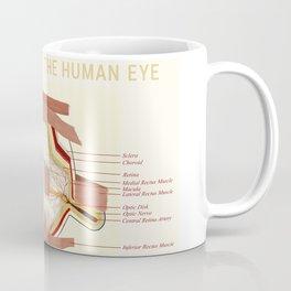 Anatomic poster human Eye Coffee Mug