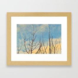 Beneath The Sun Framed Art Print