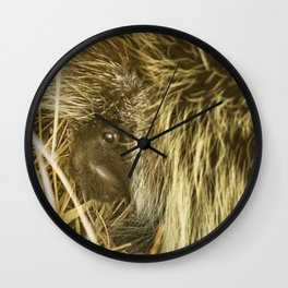 Porcupine Hiding Wall Clock
