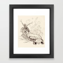 Mantis Shrimp Framed Art Print
