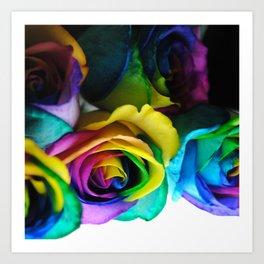 Rainbow Roses 19 Art Print