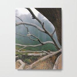 That SF Tree 2 Metal Print