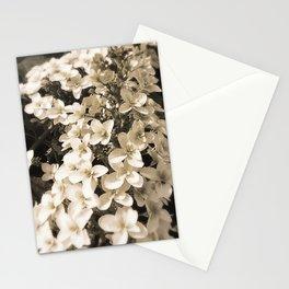 White Summary Veil Stationery Cards