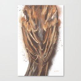 Sparrow's Back Canvas Print