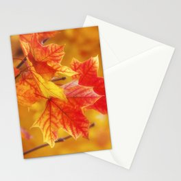 Colorful Leaves Stationery Cards