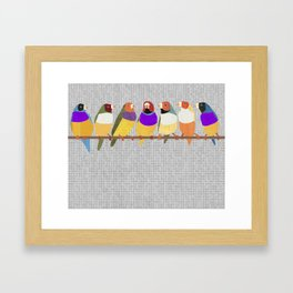 Lady Gouldian Finches Framed Art Print