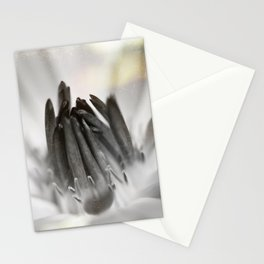 With Time (Black and White) Stationery Cards