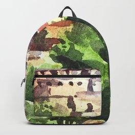 Istanbul Turkey Hagia Sophia Backpack