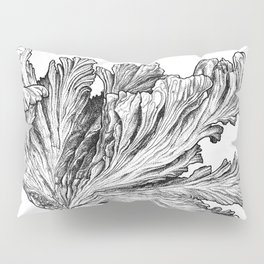 Charybdis Pillow Sham