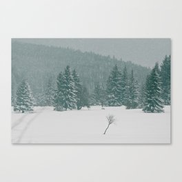Withstand Canvas Print