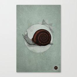 Escargö Canvas Print
