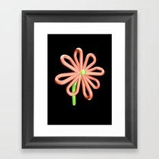 Balloon Flower Framed Art Print