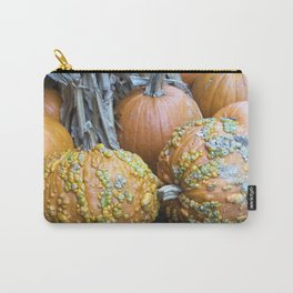 Longwood Gardens Autumn Series 332 Carry-All Pouch