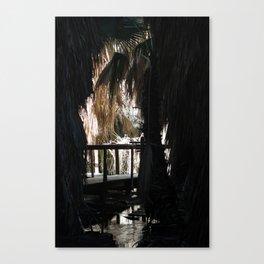 Walkway Through The Oasis Coachella Valley Wildlife Preserve Canvas Print