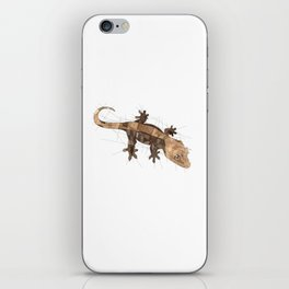 Crested Gecko iPhone Skin