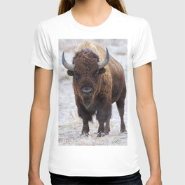 In The Presence Of Bison T-shirt
