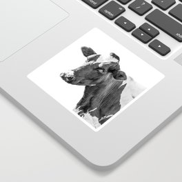 Cow Photography Animal Art | Minimalism black and white | black-and-white | Peek-a-boo Sticker