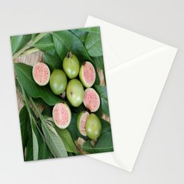 FRUITS & LEAVES Stationery Cards