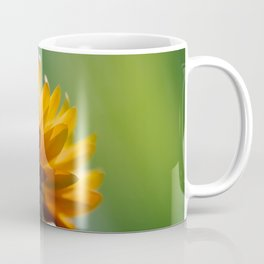 Orange Flower Macro Coffee Mug